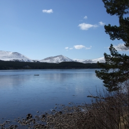 Loch Morlich - Blue Winter